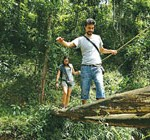 Nature-walks--Wayanad