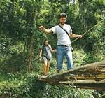 Nature-walks--Wayanad
