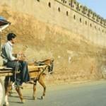delhi--chennai-1130