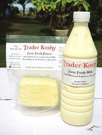 Trader Koshy (1)