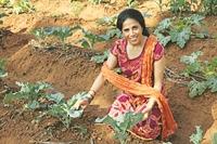 Sangita Sharma - Annadana
