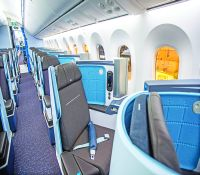 787 Dreamliner 009